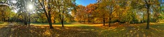 Autumn Colors in Volkspark Humboldthain (joaobambu) Tags: park autumn panorama berlin fall colors leaves germany herbst explore plus volkspark humboldthain iphone6
