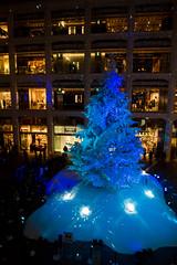 KITTE White Tree -Winter Illumination 2015-2016 (Marunouchi, Tokyo, Japan) (t-mizo) Tags: light japan night canon tokyo illumination sigma   canon5d lr marunouchi lightroom      kitte  lr6 chuouku  lrcc eos5d3 eos5dmarkiii 5d3 5dmark3 canon5d3 eos5dmark3 5dmarkiiii  michiterrace  tokyomichiterrace  lightroomcc lightroom6 kittewhitetree kitte sigma2435mmf2dghsmart sigma2435f2 sigma24352 sigma2435mm sigma2435mmf2 sigma2435mmf2dg sigma2435mmf2dgart sigma2435mmf2art