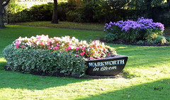 Warkworth, Northumberland. (marj.p. (Catching up!!)) Tags: park flowers autumn holiday northumberland warkworth floraldisplay northeastengland rivercoquet warkworthnorthumberland fujifinepixhs50 warkwothinbloom