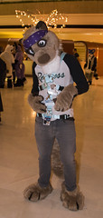 DSC_0071 (Acrufox) Tags: chicago illinois furry midwest december ohare rosemont convention hyatt regency 2014 fursuit furfest fursuiting acrufox mff2014