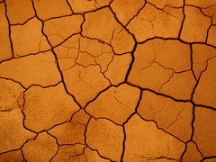 Crack Propagation (Dru!) Tags: orange brown mud fine dry crack clay dried polygon drying silt shrink fines shrinkage propagation