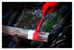 painting mountains (AndtorG) Tags: montagne cai sentiero manutenzione bosco segnaletica caisalerno