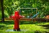 Hidrante (chwmax) Tags: hidrante hydrant bomberos plaza parque park square hamacas columpios firefighters bird dove swings slide