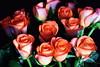 DSC_4245 Bouquet of Orange Roses (PeaTJay) Tags: nikond750 reading lowerearley berkshire macro micro closeups gardens indoors nature flora fauna plants flowers bouquetofroses rose roses rosebuds