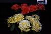 DSC_4256 (PeaTJay) Tags: nikond750 reading lowerearley berkshire macro micro closeups gardens indoors nature flora fauna plants flowers rose roses rosebuds