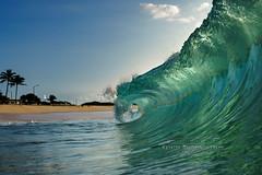 Sandys Clean and Empty mornings (MICHAEL A SANTOS) Tags: aloha beach c6000 clarity clouds eastshore eastside hawaii hawaiibeaches hawaiianbeaches liquideyewaterhousing liquideyewaterhousingc1795 liquideyewaterhousingc6000 michaelasantos oahu ocean paradise reef rokinon saintsphotography sand sel28f2 sky sony sony28mmf2 sonya6000 sonyalpha sunrise surfphotography waves whitewash