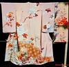 Shizuka - Pale Pink Taisho Houmongi (MissMyloko) Tags: kimono display anime north 2016 taisho houmongi peach pink peacock peony tsume tsuzure roman budgie parrot rose