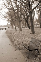 Park bench (Pat's_photos) Tags: park bench hbm