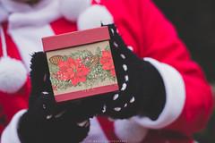 holiday2016-b03 (jobevvy) Tags: peddlersvillage 2016 onlocation christmas cosplay anime gaming xmas photoshoot