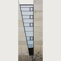 556 (Stadtromantikerin) Tags: urban cityscape city architecture verticality building mannheim windows tree geometrie geometry gebäude abstract smartphonephotography
