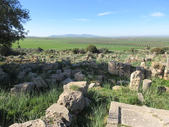 Ruins with fields and distant mountains, Volubilis, Morocco (Paul McClure DC) Tags: morocco almaghrib fèsmeknèsregion volubilis jan2017 roman architecture historic scenery