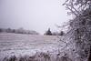 wintry (Jules Marco) Tags: wintry winter winterlandschaft landschaft landscape natur nature canon eos600d sigma1020mmf35exdchsm woodquarter waldviertel weitwinkel wideanglelens österreich austria niederösterreich loweraustria cold kalt schnee snow outdoor