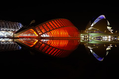 Futuro. (alcahazada) Tags: ciudaddelasartesylasciencias reflejos nocturna arquitectura santiagocalatrava futurista luces rojo negro cityofartsandsciences reflections night architecture futuristic lights red black valencia spain