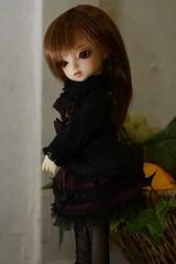幼SDエレナ (折敷) Tags: doll bjd sd yosd elena