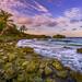 Long-Bay-Portland-Jamaica_04172016-33