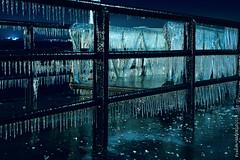 De Lumière et de Glace (Franck Baduel) Tags: léman arctique polaire glace tempète yvoire evian