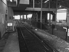 (don1775) Tags: mbta 2017 winter redline transporation subwaystation umassjfktstation snowing hdr dorchester boston newengland bw