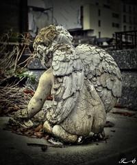 Cimetière de Montmartre_2579 (Sleeping Spirit) Tags: cimetière montmartre cemetary cemetaries
