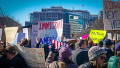 2017.02.04 No Muslim Ban 2, Washington, DC USA 00445