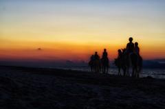 Atlar ve Günbatımı (-daniska-) Tags: sunset horse kos greece pentax k5 50mm sun