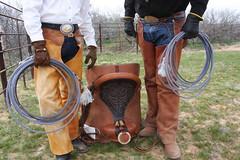 COWBOY PHOTO SHOOT (AZ CHAPS) Tags: ranch arizona leather cowboy boots rope gloves chaps buckles saddle bulge wrangler