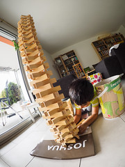 230/365: I Wonder What Happens If... (haslo) Tags: wood tower toys kid play distorted olympus fisheye falling omd em1 probing project365 115in2015