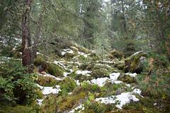 Nationalpark Hohe Tauern in der Umgebung der Rudolfshtte am Weisee-bw_20150926_2693.jpg (Barbara Walzer) Tags: uttendorf nationalparkhohetauern weissee gletscherwelt berghotelrudolfshtte weisseegletscherwelt alpinzentrumrudolfshtte 260915