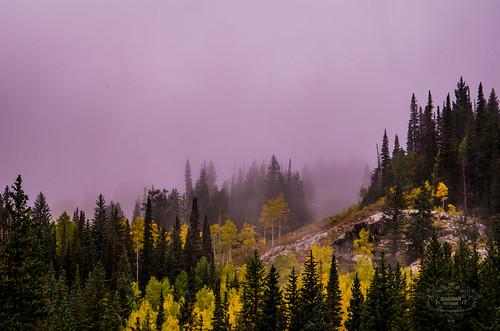 Cloudy Silver Lake