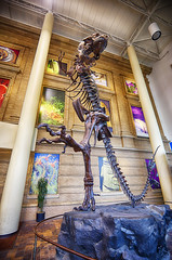 Step to the left (Kansas Poetry (Patrick)) Tags: t colorado denver rex bakker trex robertbakker tyrannosaur denvermuseumofscienceandnature patrickemerson ianemerson patricklovesnancy patrickiandocolorado