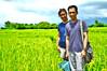 DSC_0132 copy (kenken.marilag) Tags: flower cow rice philippines farming nueva baka palay ecija lupao