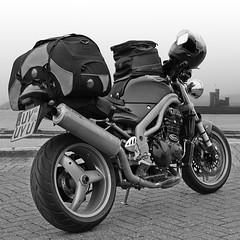 Road-ready (Rob de Hero) Tags: trip rain speed luggage motorbike triumph motorcycle douglas triple isleofman badweather reise motorrad arriving motorradtour speedtriple gepck ankommen bagster