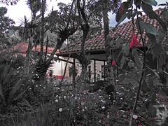 La Quinta Bolívar