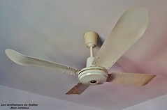 4 Saisons 120 cm Ceiling Fan (JeanLemieux91) Tags: old canada metal wall vintage de four cuatro fan mural industrial control montral 4 ivory ceiling retro qubec da older 1981 nut curved 1980s viejo powerful blades mtal spinner techo saisons vieux ventilador plafond teto palas industriel ventilateur quatre soffitto ventilatore ivoire contrle pales puissant venair