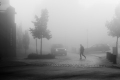 October fog (*Kicki*) Tags: dimma nacka sweden järlasjö man car street trees fog foggy mist person 100mm morning october autumn stalands people fall weather