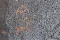 30095294 (wolfgangkaehler) Tags: old rock asian ancient asia desert mongolia centralasia petroglyph gobi blackmountains petroglyphs ibex mongolian gobidesert southernmongolia