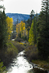 IMG_5726 (ckhaley) Tags: autumn mountain mountains fall outdoors hiking sierra mammoth sierras mammothlakes eastern easternsierras easternsierra devilspostpile usfs devilspostpilenationalmonument usdepartmentoftheinterior