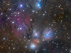 NGC 2170: Still Life with Reflecting Dust (Oleg Bryzgalov) Tags: deepspace astrophoto monoceros astrometrydotnet:status=solved ngc2170 astrometrydotnet:id=nova1343528 ngc2182 lbn999 vdb67 vdb68 vdb69