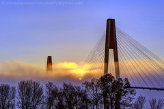 Fog at sunrise (james c. (vancouver bc)) Tags: morning bridge blue winter sky orange cloud sun sunlight white mist canada color tree tower tourism beautiful silhouette yellow fog skyline architecture sunrise river landscape golden twilight colorful suspension outdoor dusk britishcolumbia foggy cable landmark tourist structure transportation infrastructure vista leafless skytrain fraserriver newwestminster attraction lighten propagate