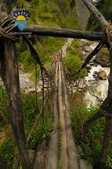 nurkowanie-travel-pl-119.jpg (www.nurkowanie.travel.pl) Tags: indonesia places papua baliem