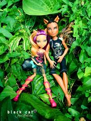 Clawdeen Wolf and Clawd Wolf (seiya_mooncat) Tags: boy boys werewolf photo wolf doll dolls photoshoot photos guys mh mattel basic makeasplash 2015 monsterhigh clawdeenwolf clawdwolf osalina monsterhigh2015