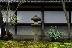stone lantern. (cate) Tags: lantern stone moss fallenleaves