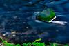 WalesDay1-312 (ShutterJackProductions) Tags: space wales sea landscape rockpools rogh cave saintdavids unitedkingdom gb