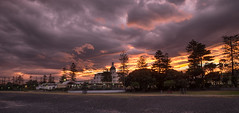 Saturday night's show (lizcaldwell72) Tags: soundshell trees hawkesbay newzealand sunset napier sky marineparade light