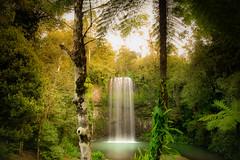 Cascade VIII (Josué Godoy) Tags: cascade cascada verde vert green trees árboles arbres nature naturaleza australia agua water eau jungle jungla foret forest selva bosque