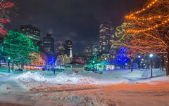 Christmas on Boston Common (jlucierphoto) Tags: christmas lites boston massachusetts commontree