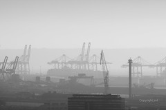 JML-2016-IMG_0444 (photo.jml) Tags: ambiance paysage brume lehavre landscape atmosphere port industrie blackwhite