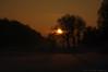Winter (Natali Antonovich) Tags: winter tervuren belgium belgique belgie nature christmasholidays christmas sunset park landscape