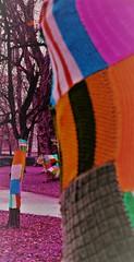 Au parc -Knutange Moselle France (camilleromane1) Tags: arbre tree parc garden square laine whool artistique art couleurs color
