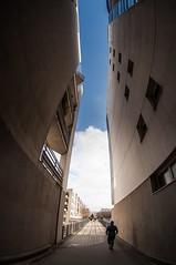 Paris, coule verte, 3 (Patrick.Raymond (3M views)) Tags: paris fisheye immeuble tokina building coulée verte nikon