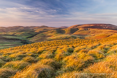 Border Ridge (dtaylorphotography) Tags: bleak borderridge cheviothill england hills hilly mountainous mountains nationalpark northeast northumberlandnortheast openaccess outdoors pennineway scotland scottishborders uk unitedkingdom windygyle